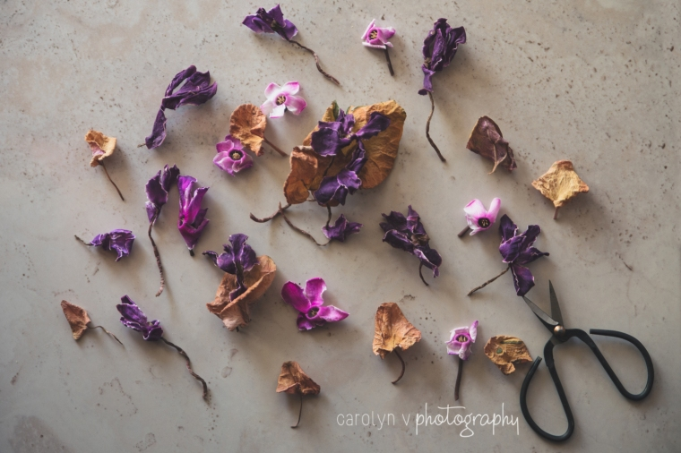 pink-purple-flowers-logo