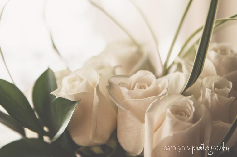 white-roses-logo