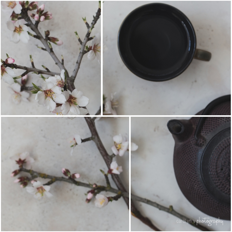 cup-of-tea-logo